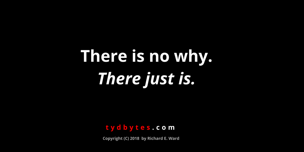 There is no why, there just is. - Richard E. Ward